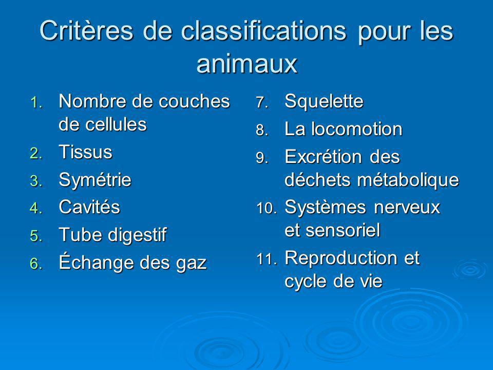 Critères de classifications pour les animaux