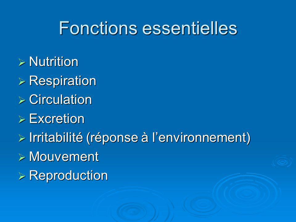 Fonctions essentielles