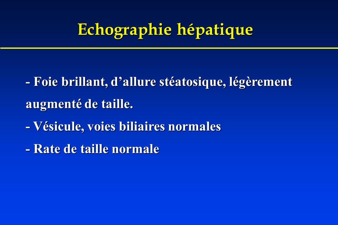 Echographie hépatique