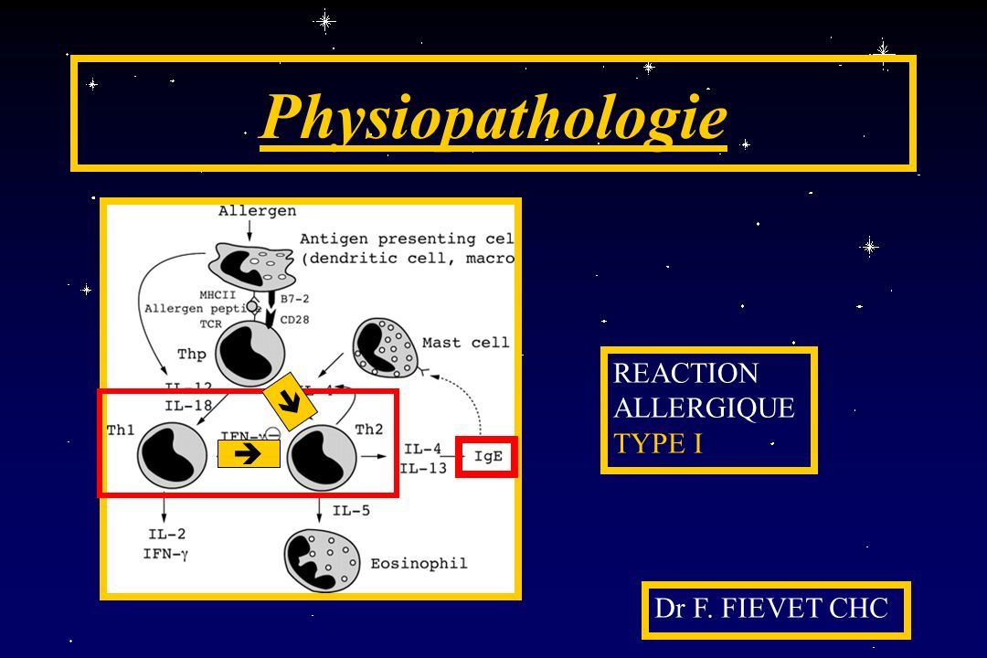 Physiopathologie REACTION ALLERGIQUE TYPE I   Dr F. FIEVET CHC