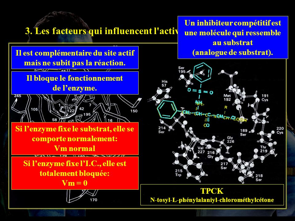 3.4.2 IC 3. Les facteurs qui influencent l activité enzymatique.