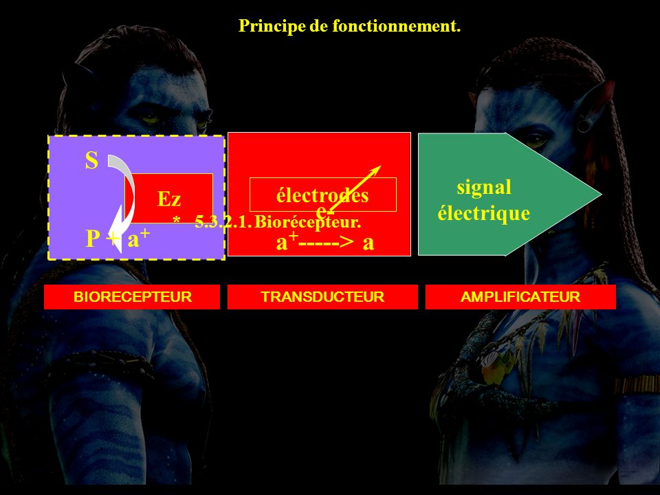 5.3.2.1 Montage S e- a+-----> a P + a+ signal électrique Ez