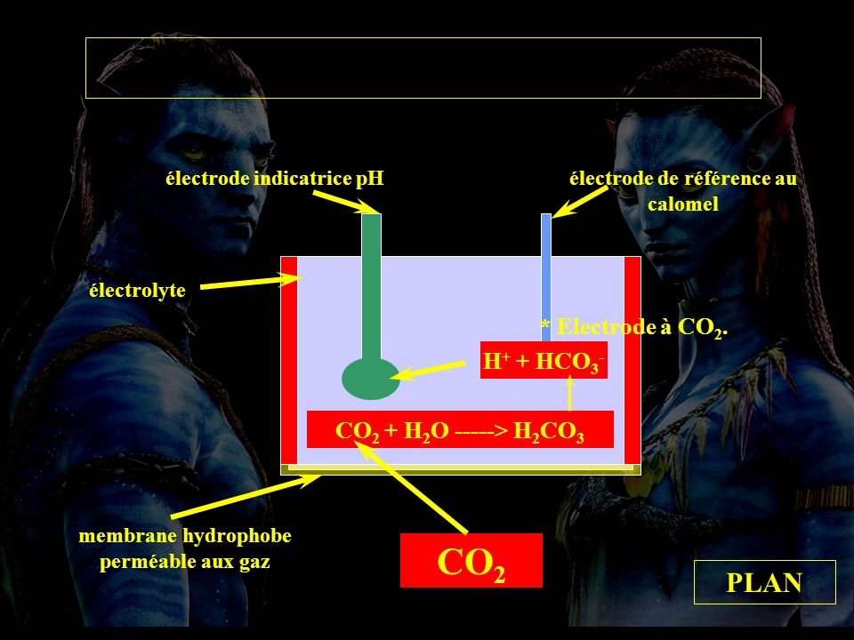 Electrode à CO2 CO2 PLAN * Electrode à CO2. H+ + HCO3-