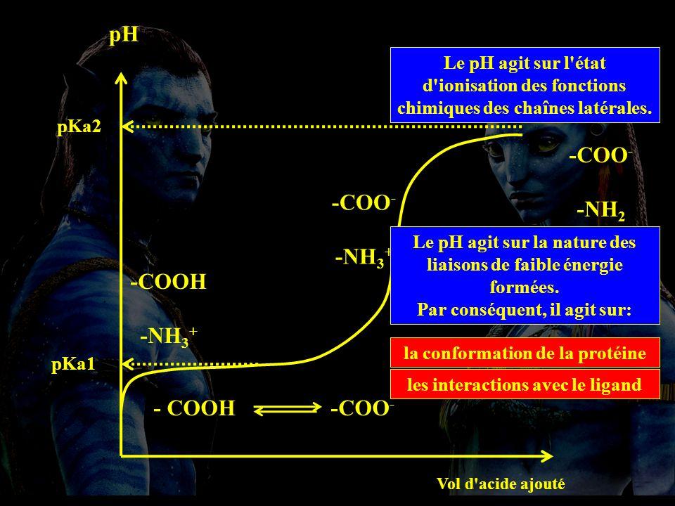 3.1.2 pH pH 3. Les facteurs qui influencent l activité enzymatique.