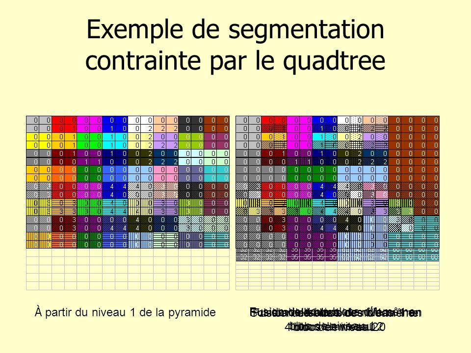 Exemple de segmentation contrainte par le quadtree