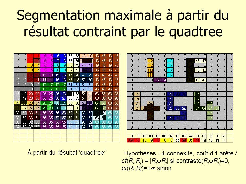 Segmentation maximale à partir du résultat contraint par le quadtree