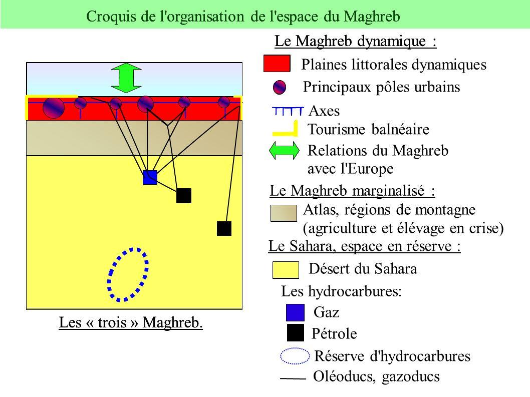 Croquis de l organisation de l espace du Maghreb