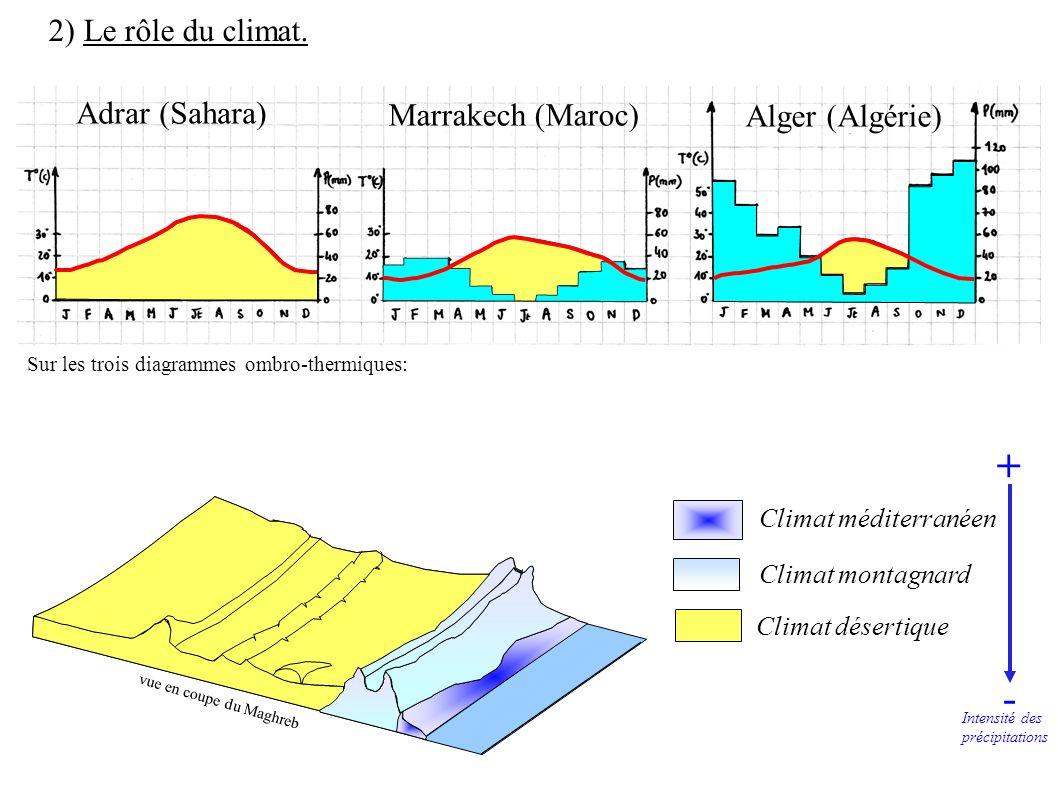 + - 2) Le rôle du climat. Adrar (Sahara) Marrakech (Maroc)
