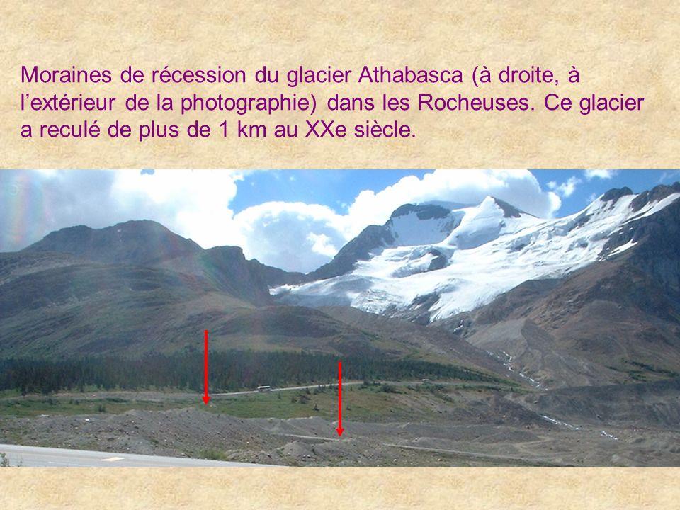 Moraines de récession du glacier Athabasca (à droite, à l'extérieur de la photographie) dans les Rocheuses.