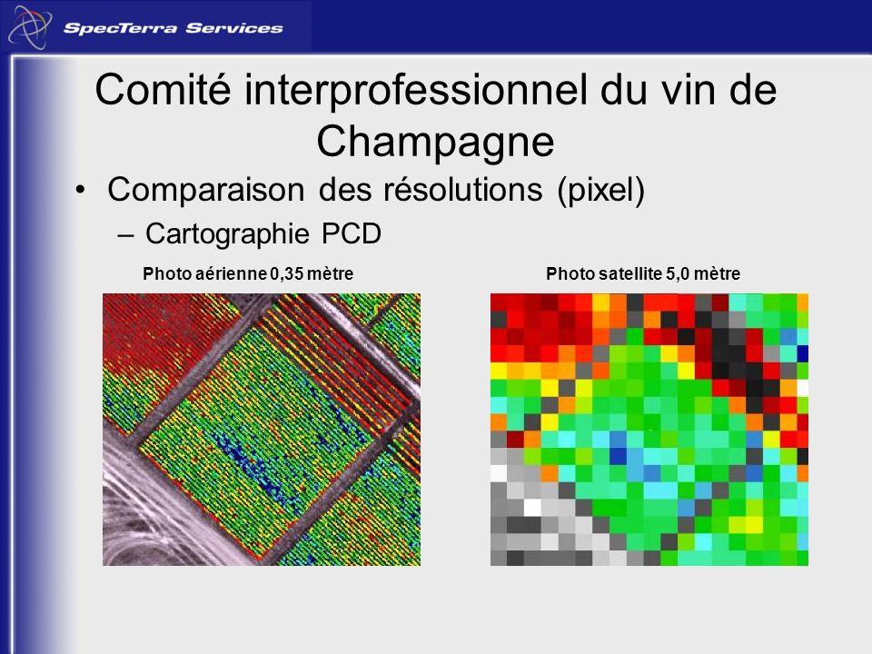 Comité interprofessionnel du vin de Champagne