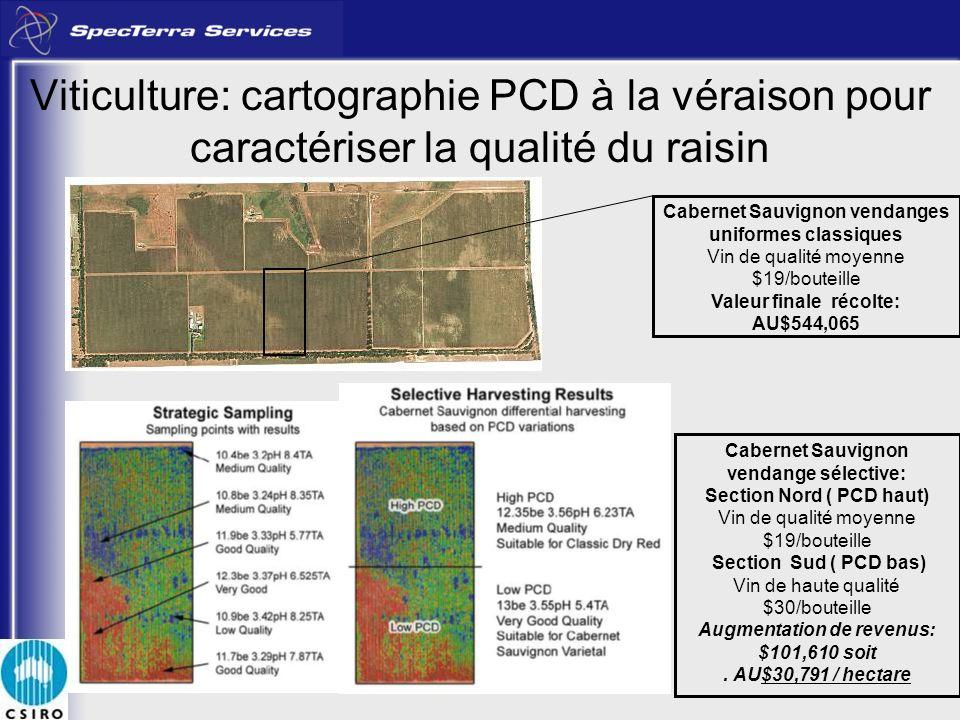 Viticulture: cartographie PCD à la véraison pour caractériser la qualité du raisin