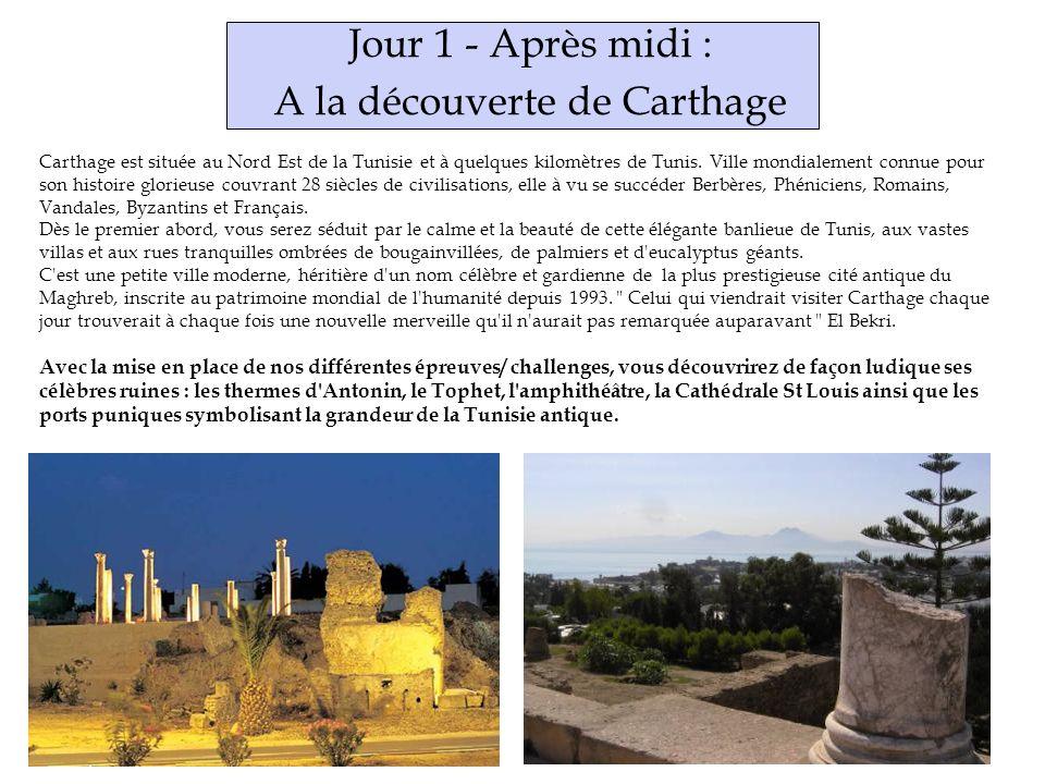 A la découverte de Carthage