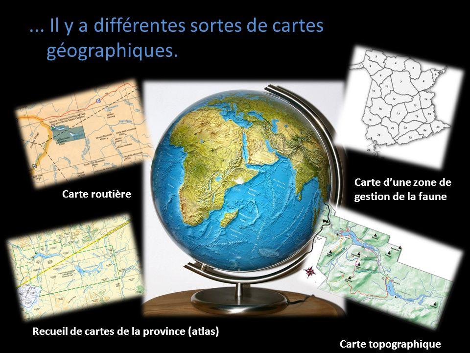 ... Il y a différentes sortes de cartes géographiques.