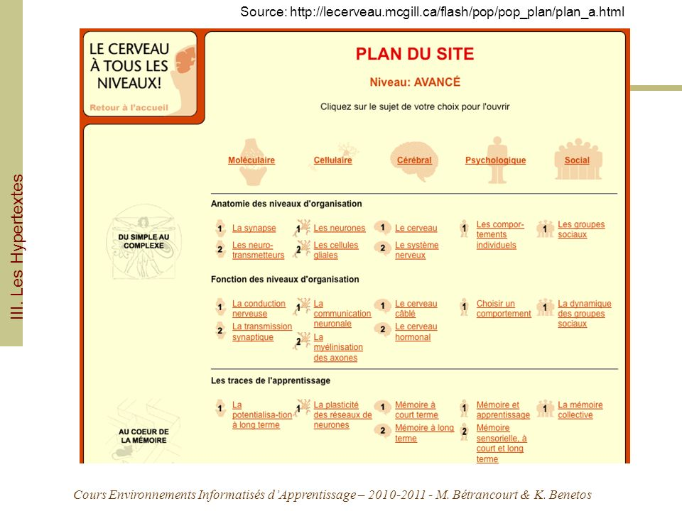 Source: http://lecerveau.mcgill.ca/flash/pop/pop_plan/plan_a.html
