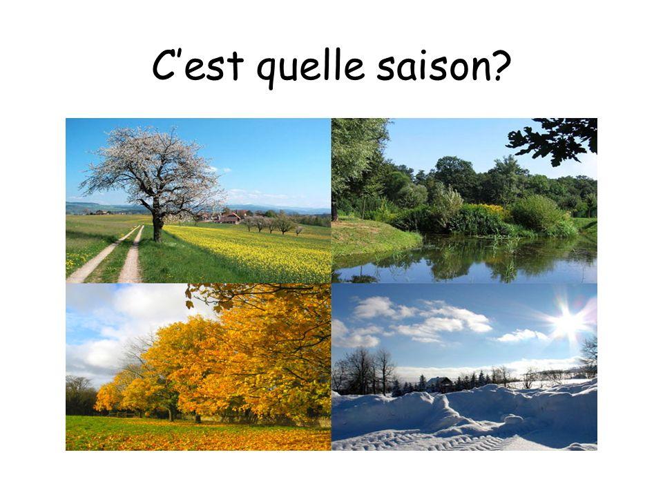 C'est quelle saison Which season is it