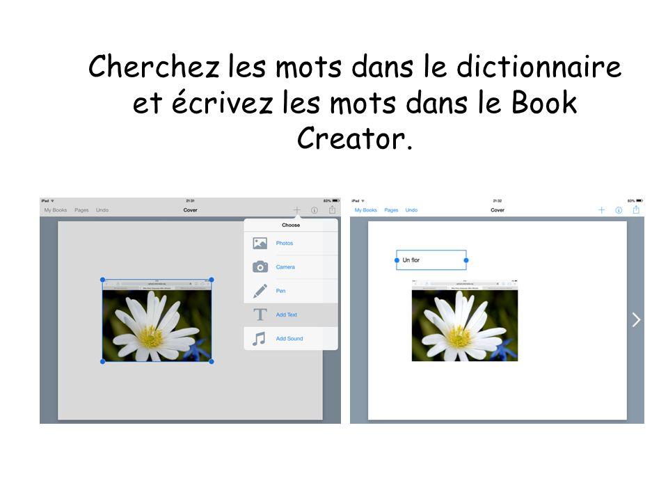 Cherchez les mots dans le dictionnaire et écrivez les mots dans le Book Creator.