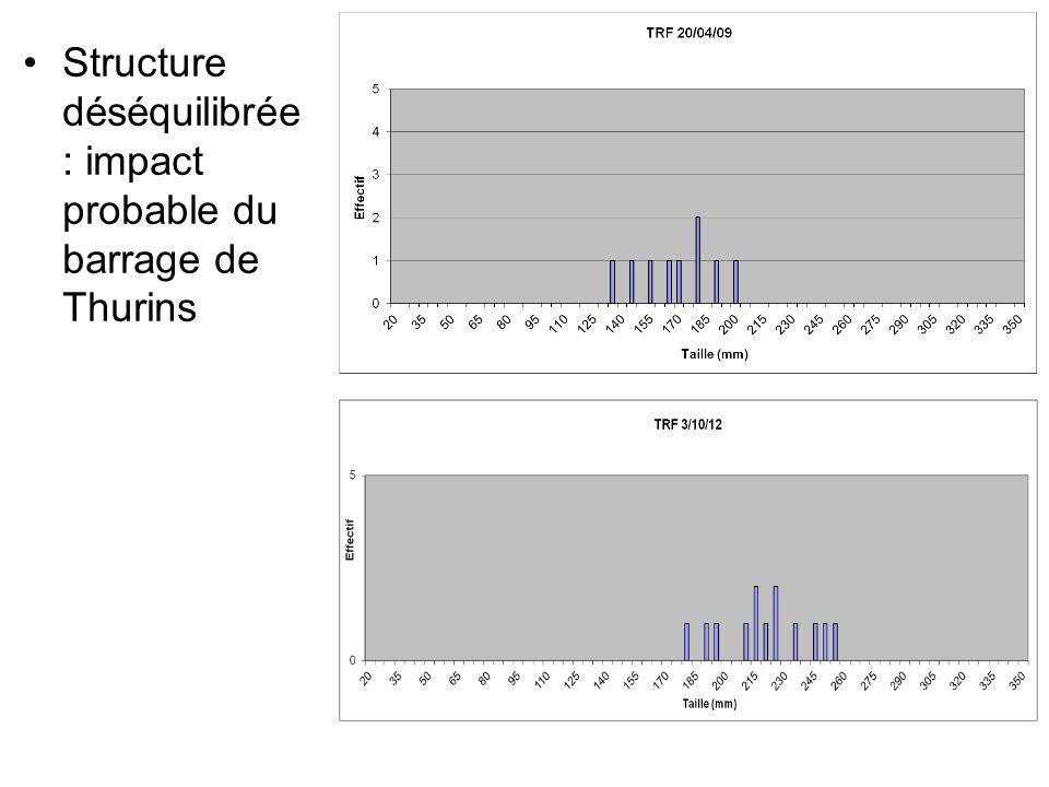 Structure déséquilibrée : impact probable du barrage de Thurins