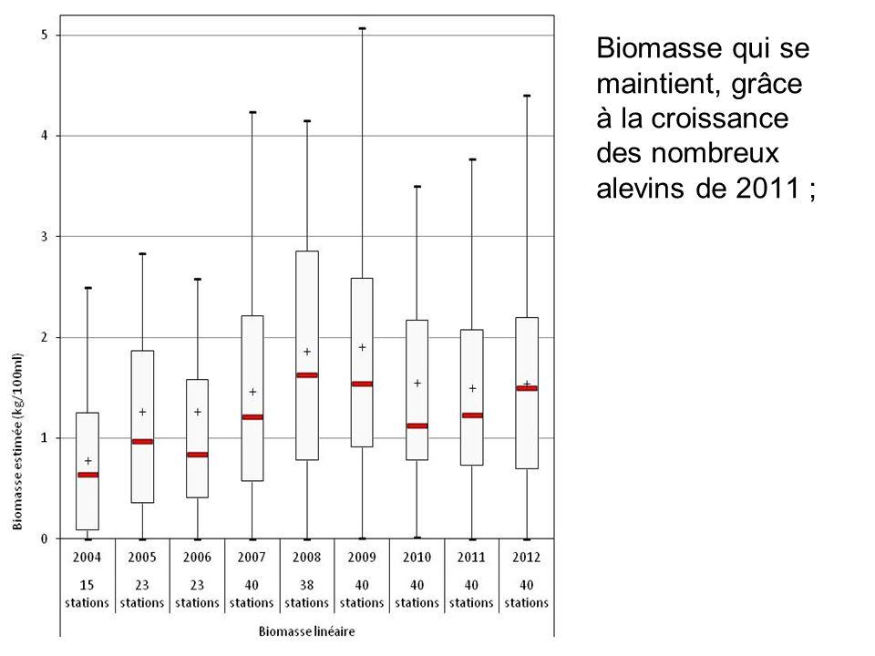 Biomasse qui se maintient, grâce à la croissance des nombreux alevins de 2011 ;