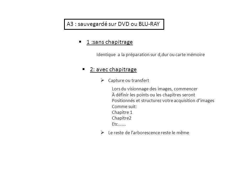 A3 : sauvegardé sur DVD ou BLU-RAY
