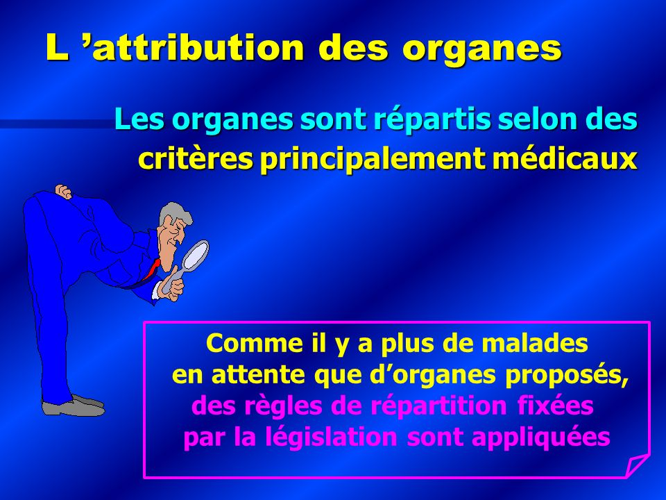 L 'attribution des organes