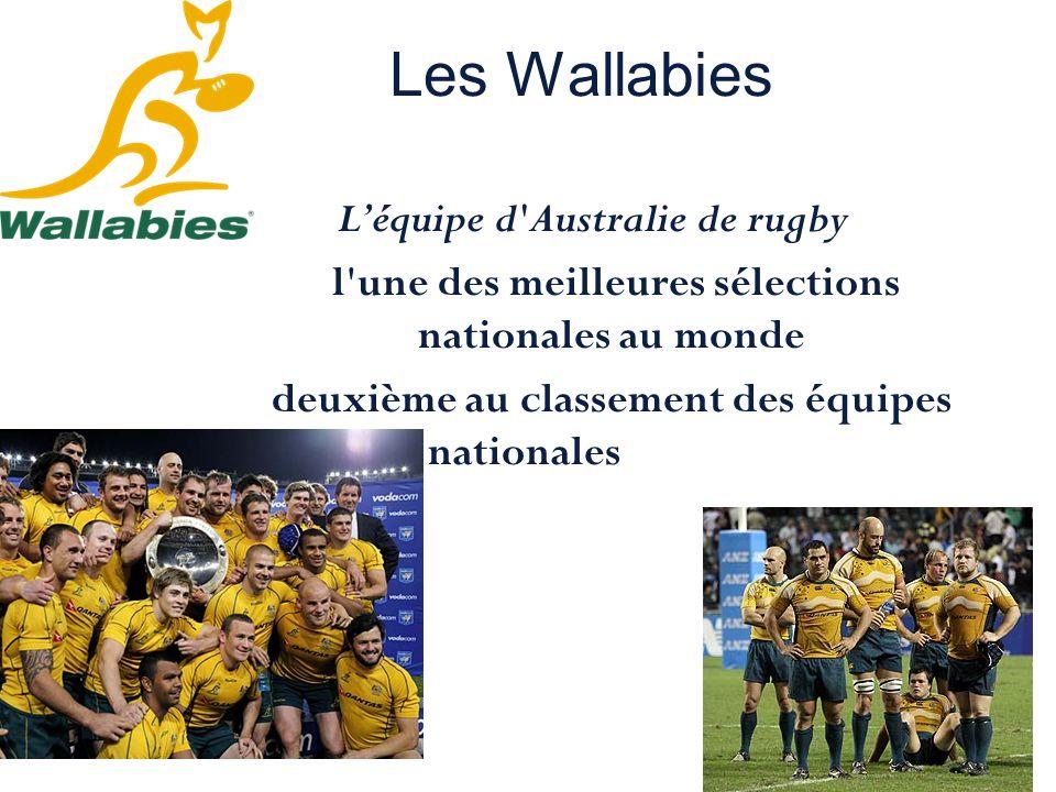 Les Wallabies L'équipe d Australie de rugby