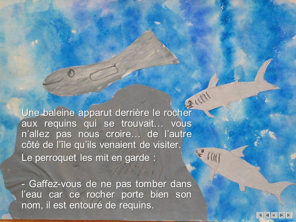 Une baleine apparut derrière le rocher aux requins qui se trouvait… vous n'allez pas nous croire… de l'autre côté de l'île qu'ils venaient de visiter.