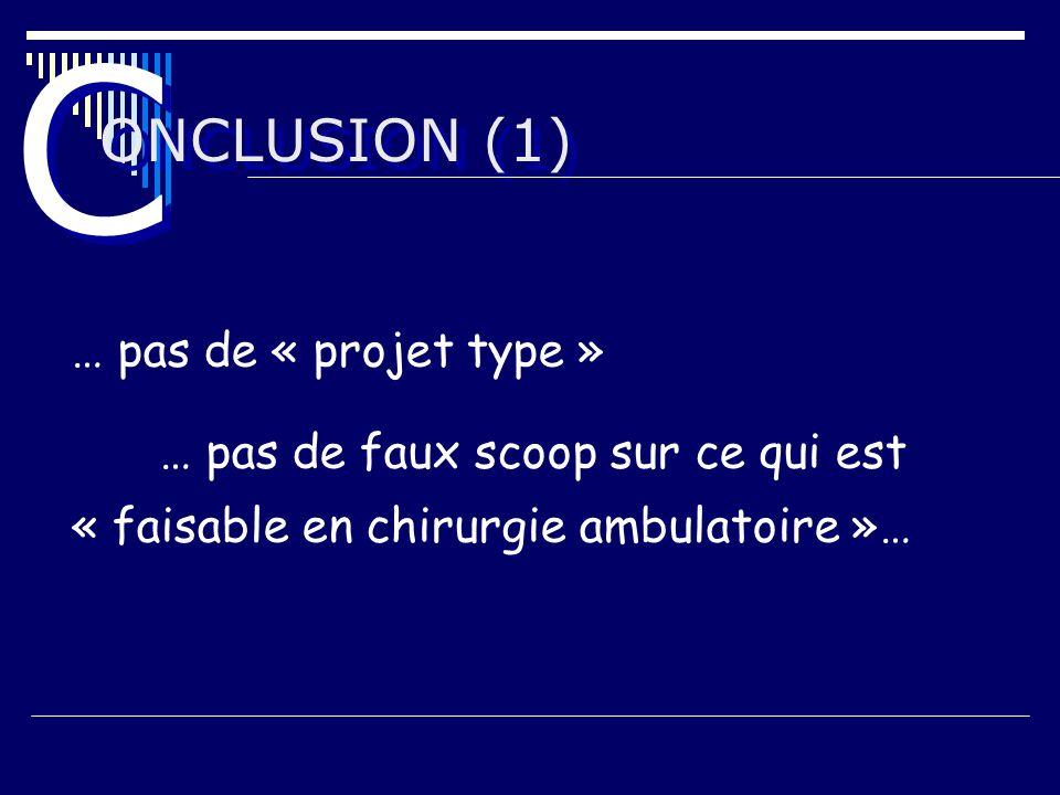 C ONCLUSION (1) … pas de « projet type »