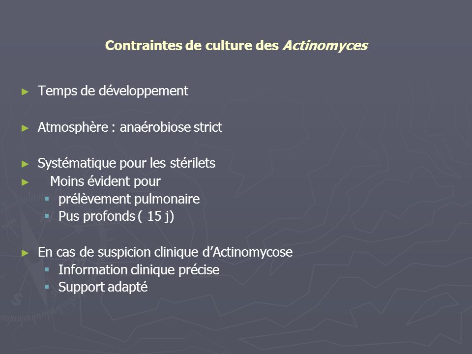Contraintes de culture des Actinomyces