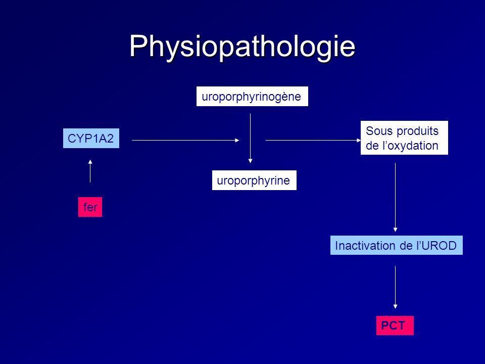 Physiopathologie uroporphyrinogène Sous produits CYP1A2 de l'oxydation