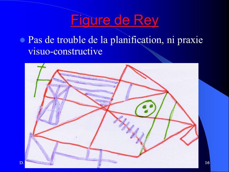 Figure de Rey Pas de trouble de la planification, ni praxie visuo-constructive.