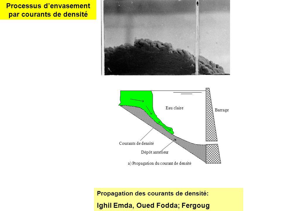 Processus d'envasement par courants de densité