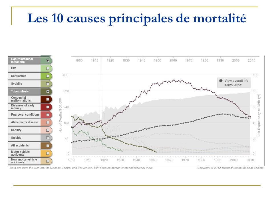 Les 10 causes principales de mortalité