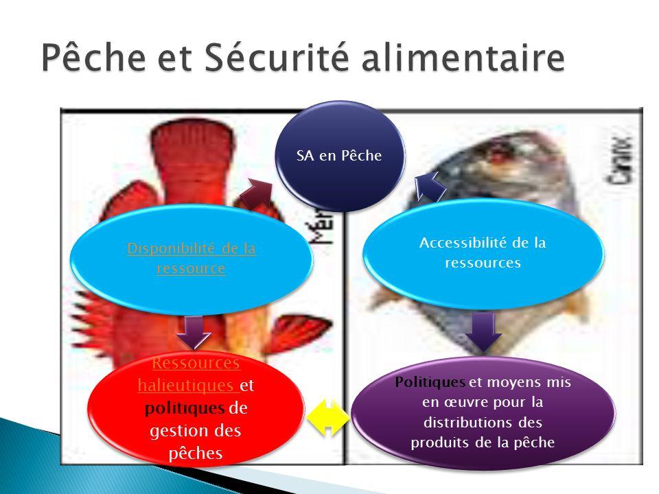 Pêche et Sécurité alimentaire