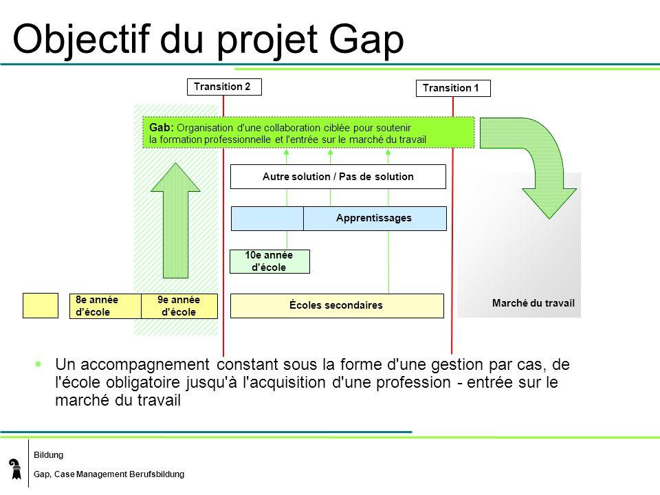 Objectif du projet Gap Transition 2. Transition 1. Gab: Organisation d une collaboration ciblée pour soutenir.