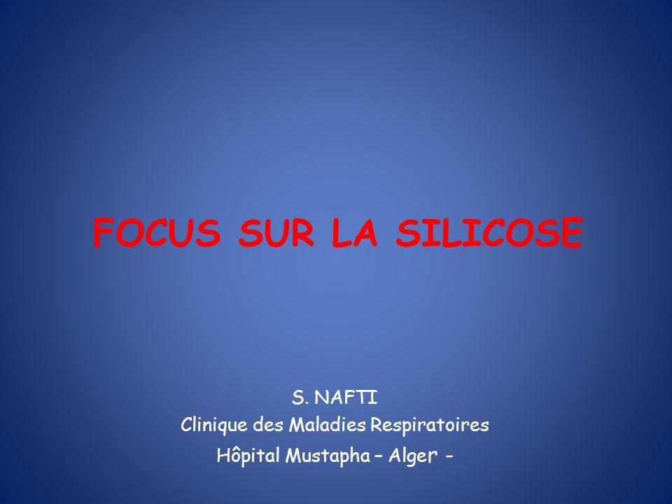 FOCUS SUR LA SILICOSE S. NAFTI Clinique des Maladies Respiratoires