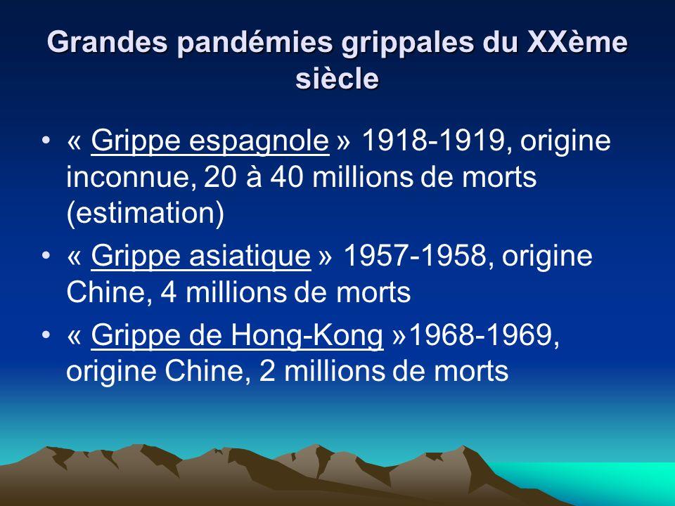 Grandes pandémies grippales du XXème siècle