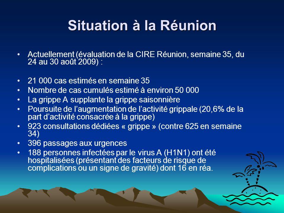 Situation à la Réunion Actuellement (évaluation de la CIRE Réunion, semaine 35, du 24 au 30 août 2009) :