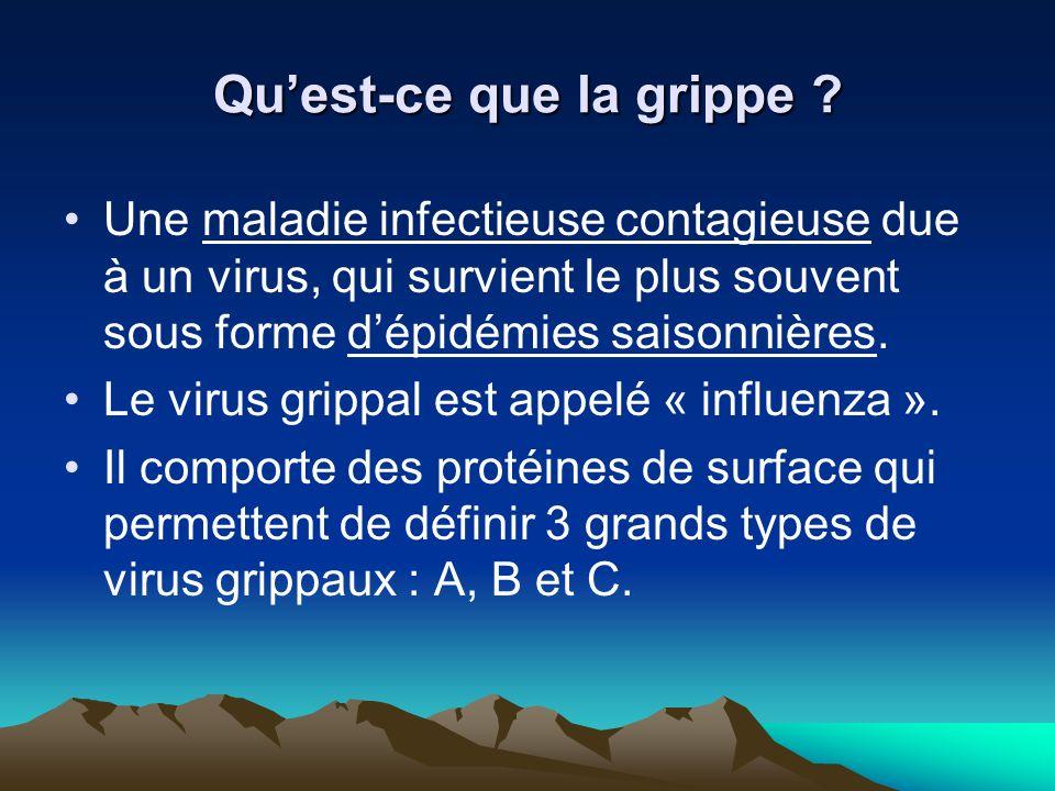 Qu'est-ce que la grippe