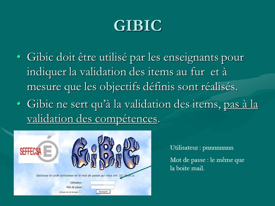 GIBIC Gibic doit être utilisé par les enseignants pour indiquer la validation des items au fur et à mesure que les objectifs définis sont réalisés.