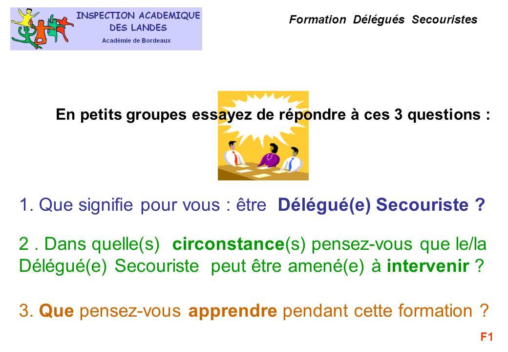 Formation Délégués Secouristes