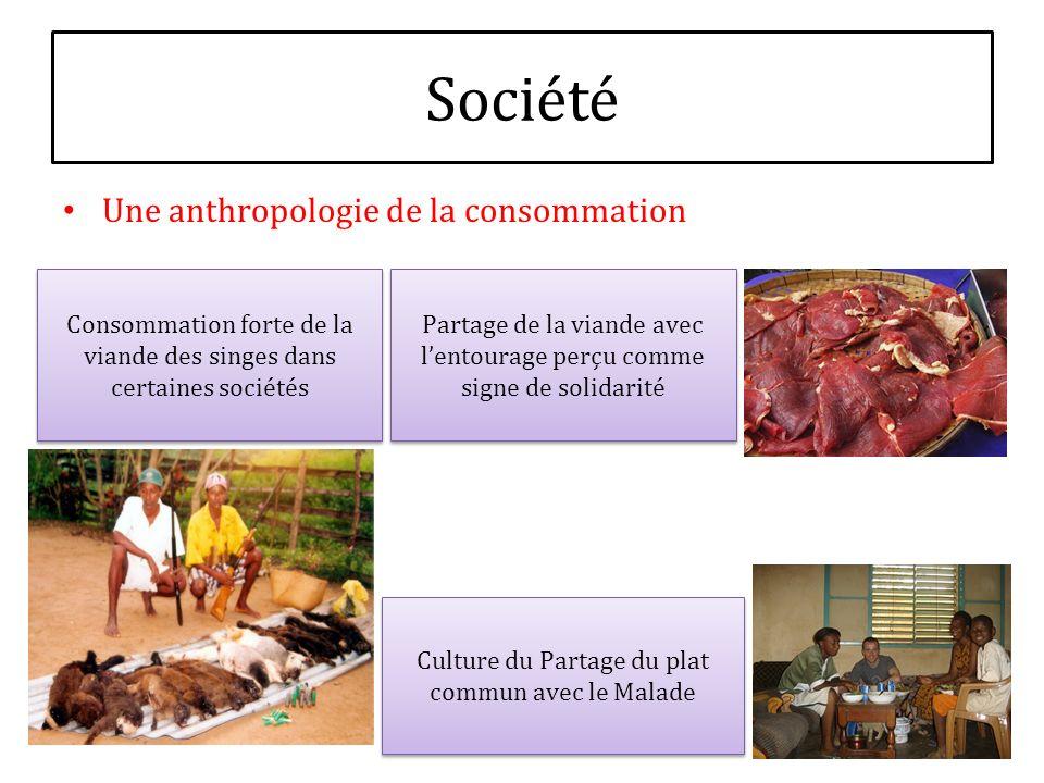 Société Une anthropologie de la consommation