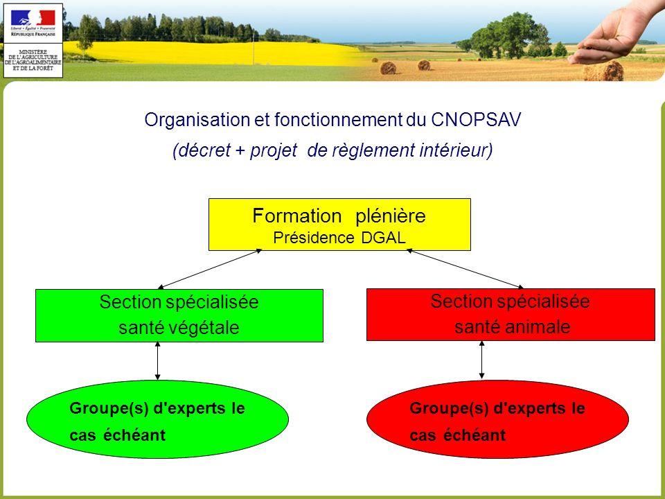 Formation plénière Organisation et fonctionnement du CNOPSAV