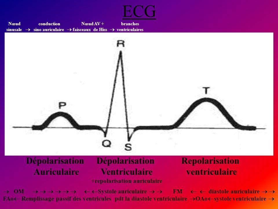 +repolarisation auriculaire