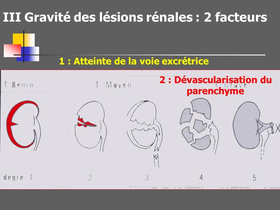 III Gravité des lésions rénales : 2 facteurs