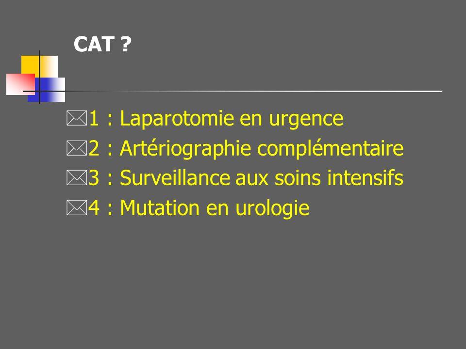CAT 1 : Laparotomie en urgence. 2 : Artériographie complémentaire. 3 : Surveillance aux soins intensifs.