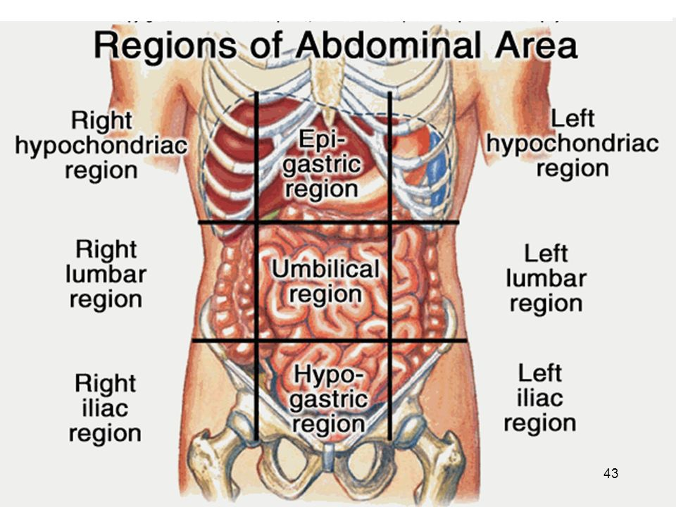 gastrites -Inflammation chronique de la muqueuse gastrique avec altérations épithéliales pouvant évoluer vers l'atrophie.