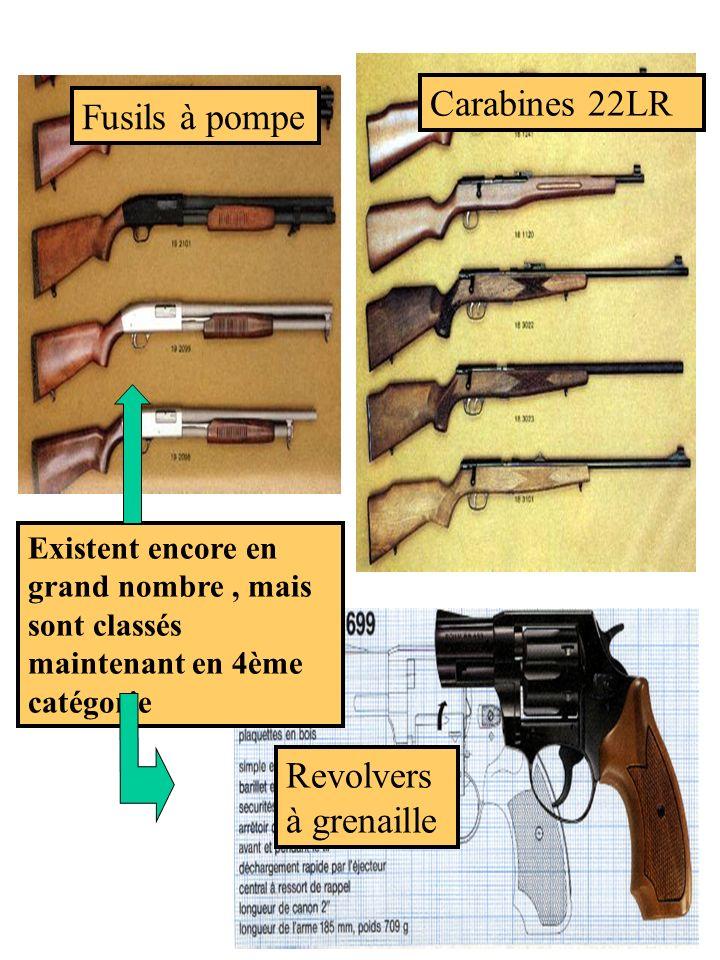 Carabines 22LR Fusils à pompe Revolvers à grenaille