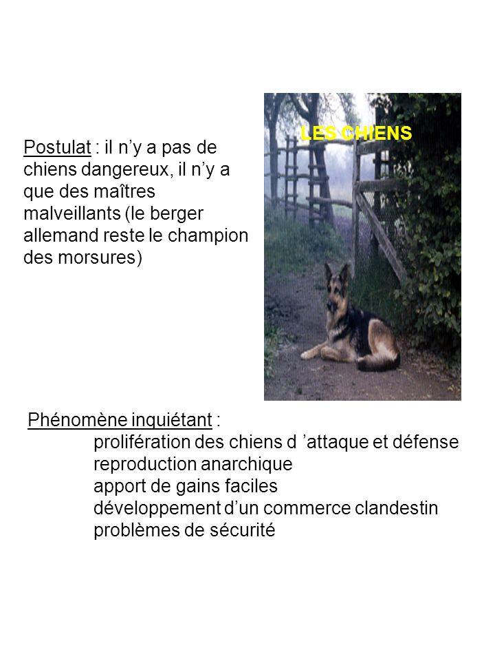 LES CHIENS Postulat : il n'y a pas de chiens dangereux, il n'y a que des maîtres malveillants (le berger allemand reste le champion des morsures)
