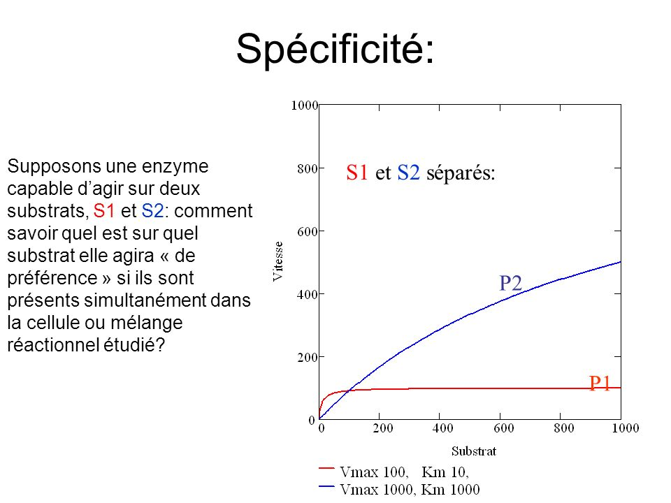 Spécificité: S1 et S2 séparés: P2 P1