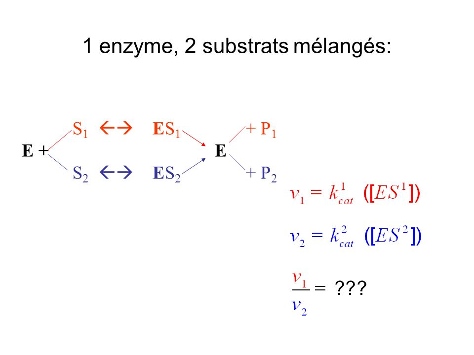 1 enzyme, 2 substrats mélangés: